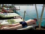 «Ебипед» под музыку Египет 2011 январь - Опа-опа, опа-опа, animation катастрофа))) ЛОВИТЕ ЕГИПЕТСКОЕ НАСТРОЕНИЕ!!. Picrolla